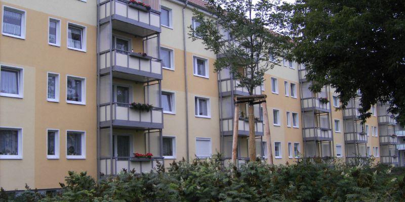 im-stadtpark-13FC6880A5-17B5-4B3E-C032-82C3933F9E1C.jpg